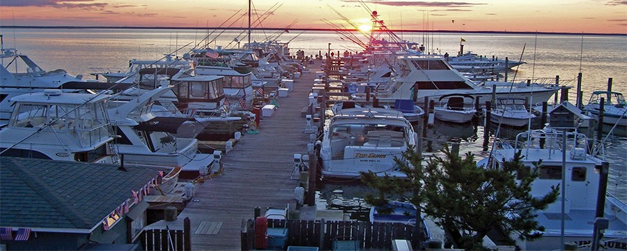 Marinas Long Beach Island Nj